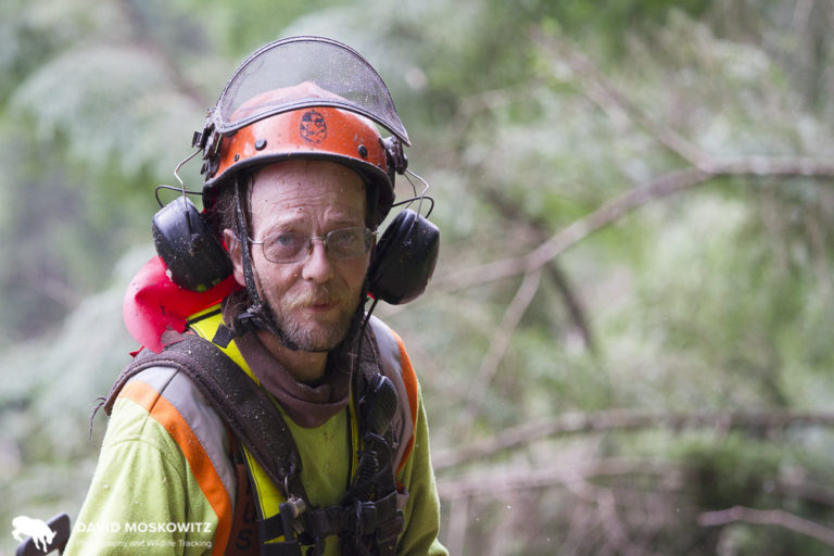 David Walker allowed us to follow him around for a morning of work felling trees in the northern Selkirk Mountains.