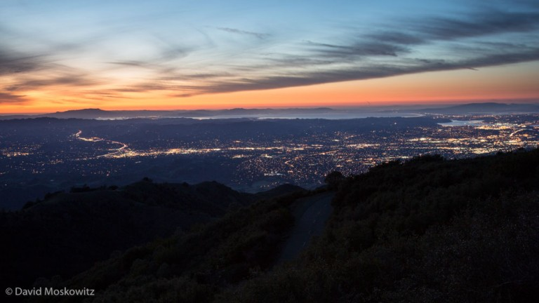The San Francisco Bay area is one of the largest metropolitan areas in the United States but still includes a matrix of open spaces and wild lands that mountain lions have managed to carve out an existence in.