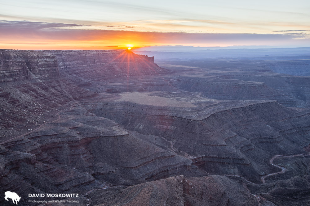 Sunrise from Muley Point, Cedar Mesa, Utah. Bears Ears National Monument.