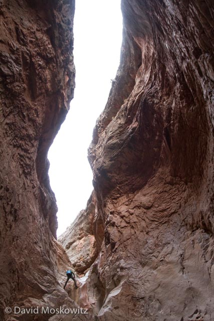 Canyoneer descending a deep limestone slot in Cove Canyon, Arizona.