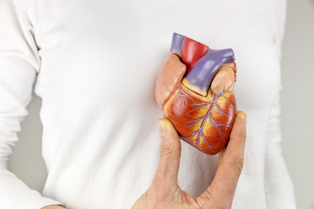 What is heart failure and what to expect after a diagnosis.  Read this to find out all you need to know and put your mind at ease.