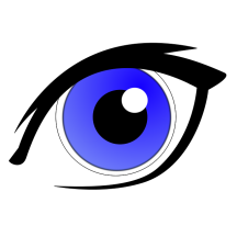vision-216x216