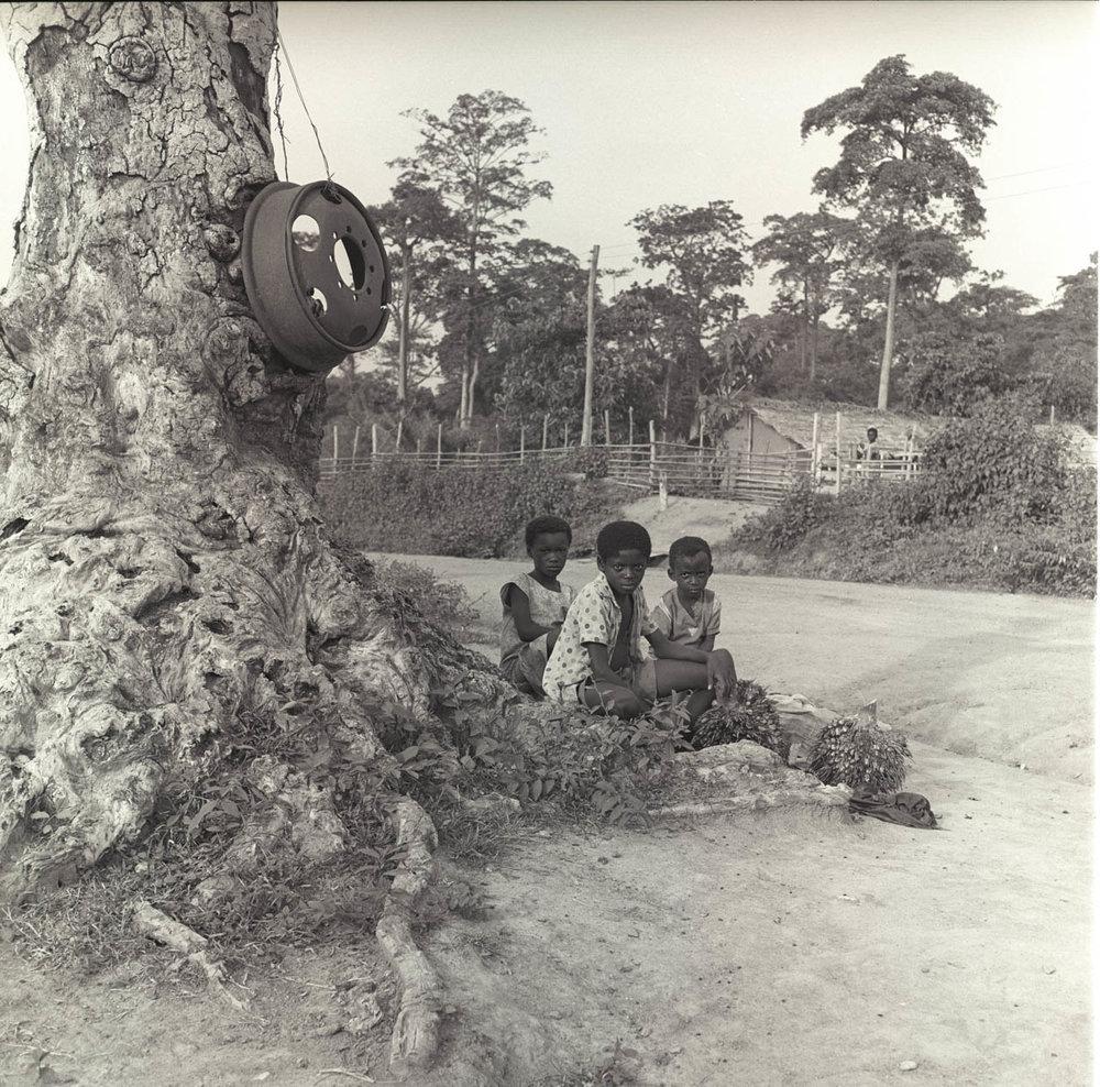 kids near tree.jpg
