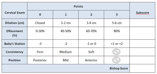 Bishop Score.png
