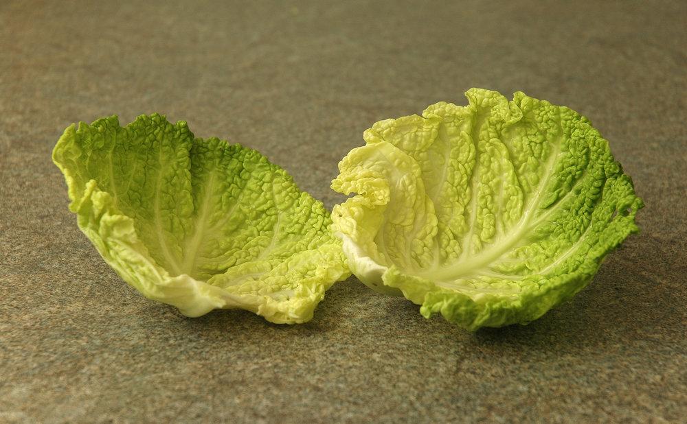 Savoy_cabbage_leaves.jpg