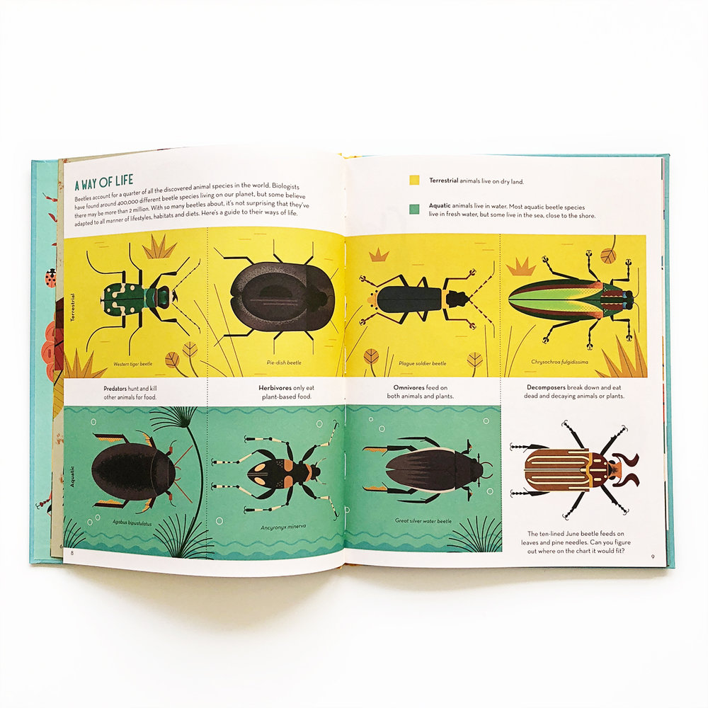 Bonkers About Beetles | Avery and Augustine