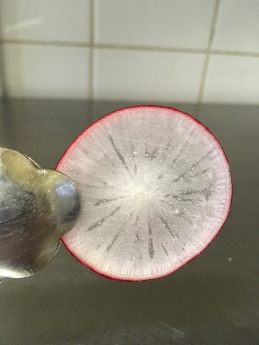 Who said you need to be able to chop like a chef in order to get the perfect radish slice. Your secret is safe with me.