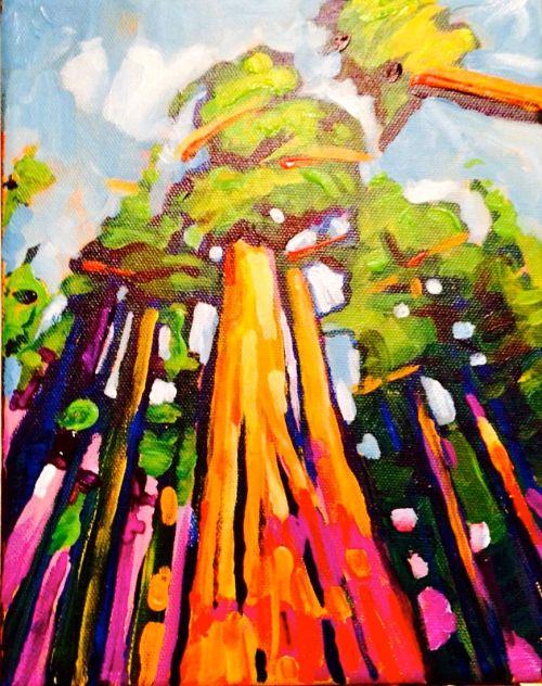Redwoods_opt.jpg