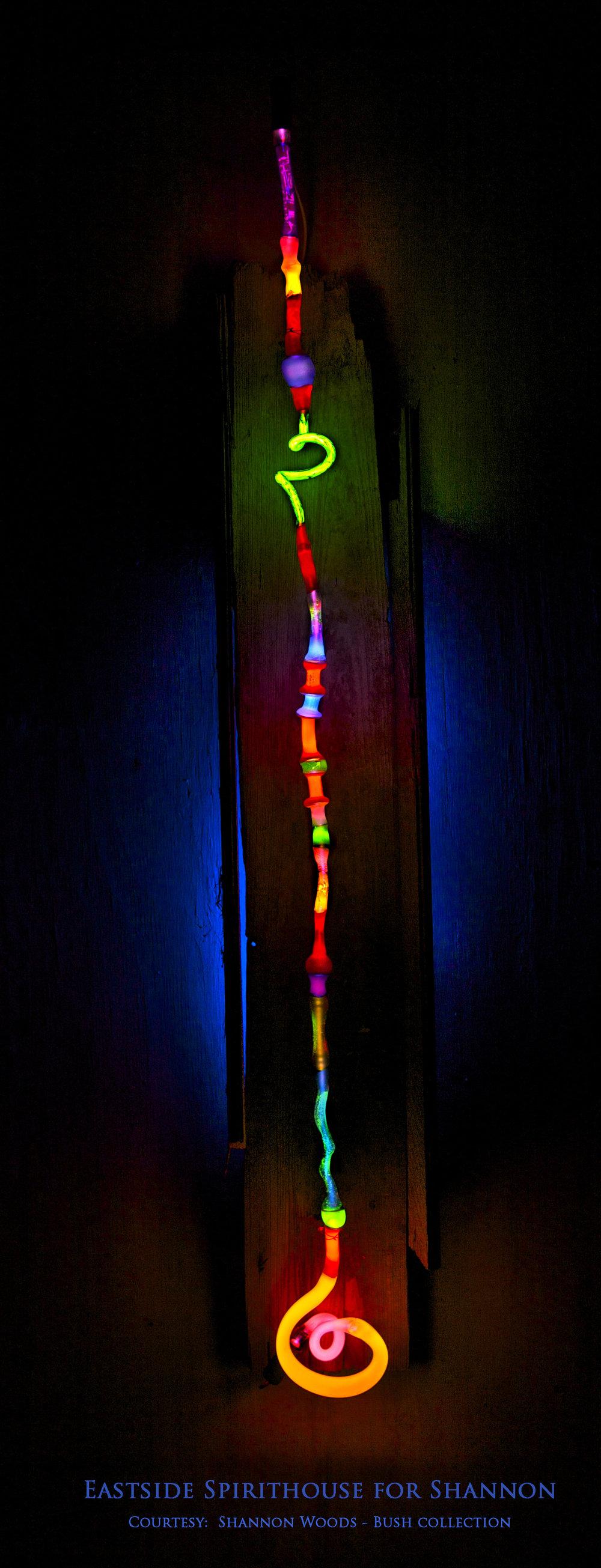 neon for Shannon.jpg