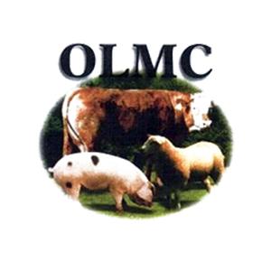 OTB_logo__0056_logo-olmc.jpg