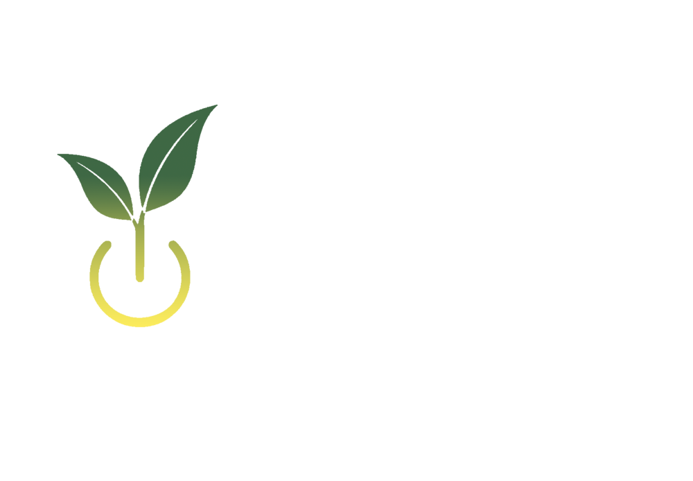 mPower Logo - NO BACKGROUND.png