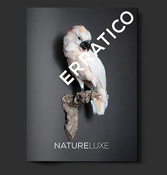 natureluxe trendbook