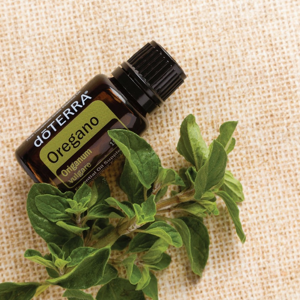 Oregano - Known as a popular cooking spice, Oregano also acts as a powerful cleansing agent, and offers powerful antioxidants—extending its uses far beyond the kitchen.*Supports a healthy immune system,healthy digestion, and respiratory function when used internally* Due to its high phenol content, caution should be taken when inhaling or diffusing Oregano; only one to two drops is needed*Put one drop in place of dried oregano in spaghetti sauce, pizza sauce, or on a roast*Put 10 drops in a 16-ounce spray bottle with water for a surface cleaner.