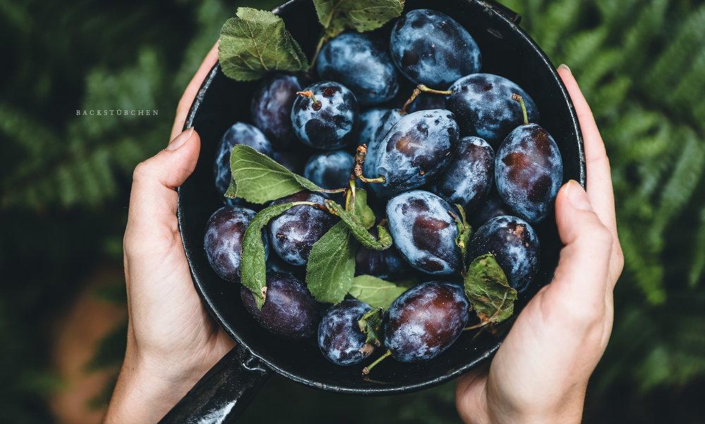 Zwetschgen & Pflaumen - Ob auf dem Kuchen, in der Marmelade oder im Chutney: Mit ihrem säuerlich-süßen Fruchtfleisch und ihrer violetten Farbe sind Zwetschgen unsere Lieblinge im Herbst. Von Erntezeit bis richtiger Lagerung: Welche Infos und Tipps euch ungetrübten Pflaumengenuss bescheren.