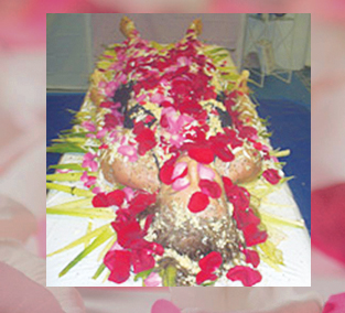 Traditional Shamanic Healing and Cleansing - This is my favorite healing of all. Traditional Shamanic Healing is a very effective hands-on-healing that is quite potent and forceful, this all-encompassing purification using herbs, natural ingredients, flowers and other healing modalities to lift and remove deep layers of emotional blocks and negative traumatic experiences from your cellular memory that are deeply buried, that no longer serve you. You will experience beautiful unconditional love from God and my team of helpers. This will assist you on all levels to bring deep healing and spiritual growth toward living the life you desire.