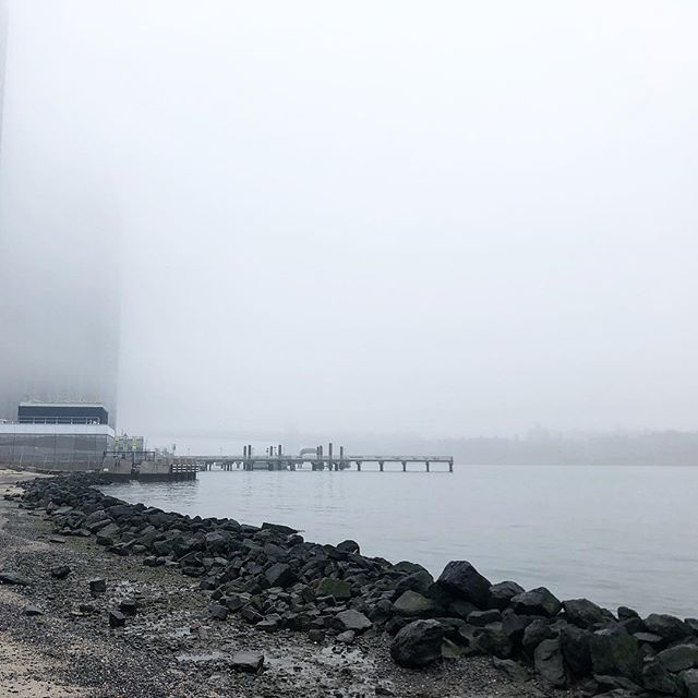 Today's mysterious fog over the East River and the Williamsburg Bridge from the East River State Park. . . . #newyork #nyc #brooklyn #bklyn #williamsburg #eastriver #eastriverstatepark #fog #water #strand #sand #natureintown #shore #rain #foggy #foggytown #foggynewyork #newyorklife #newyorkgram #smorgasburg
