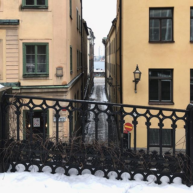 A snapshot of the nice geometry and symmetry of the small street of Gamla Stan in #Stockholm . . . . #gamlastan #gamlastanstockholm #stockholm #sweden #sverige #street #urban #urbancolors #symmetry #fence #colorstreet #winter #snow #snö #scandinavia #scandinaviancity