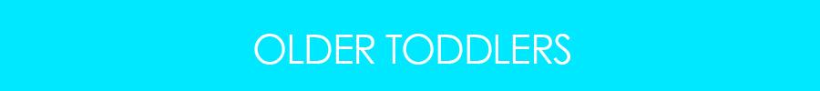 LHAS-TeacherBioBanner_Cyan-900x100_3.jpg