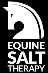 equine-salt-therapy.png