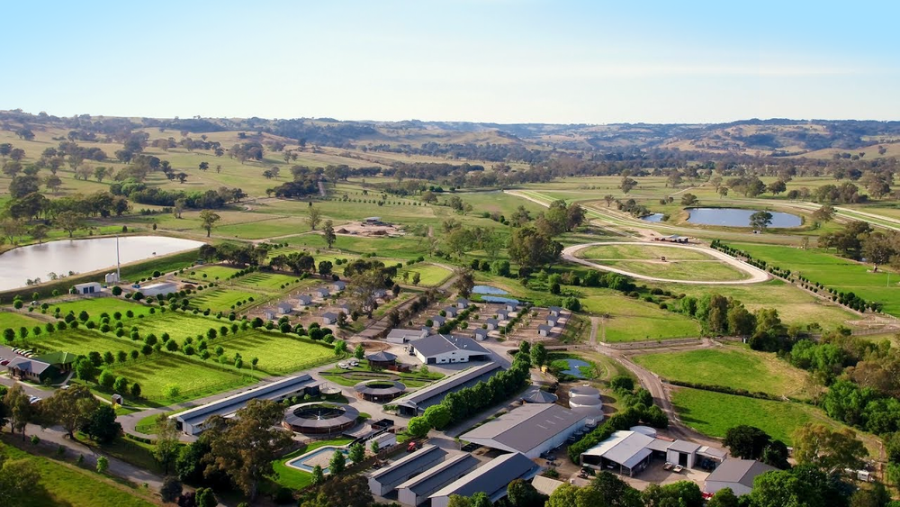 Lindsay Park Racing training facility at Euroa in Victoria.