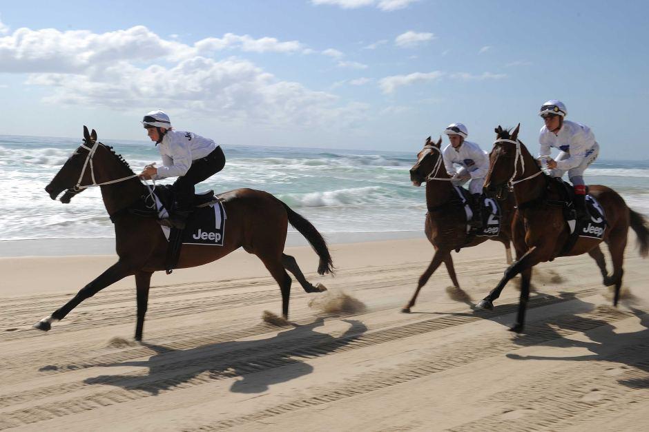 A beach run for Magic Millions horses.