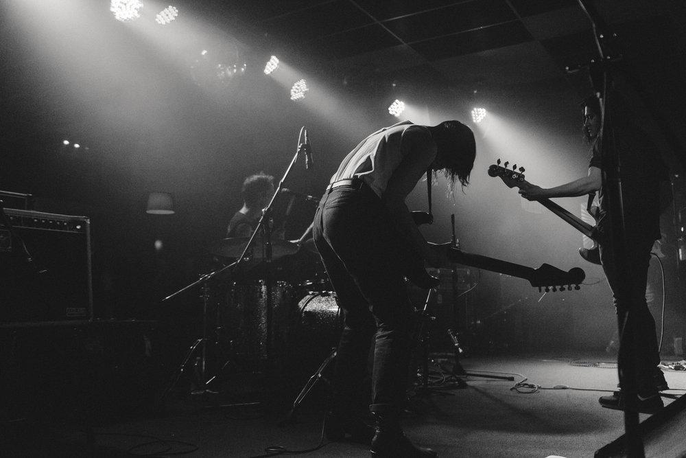Deafwish_Night Cat-10.jpg