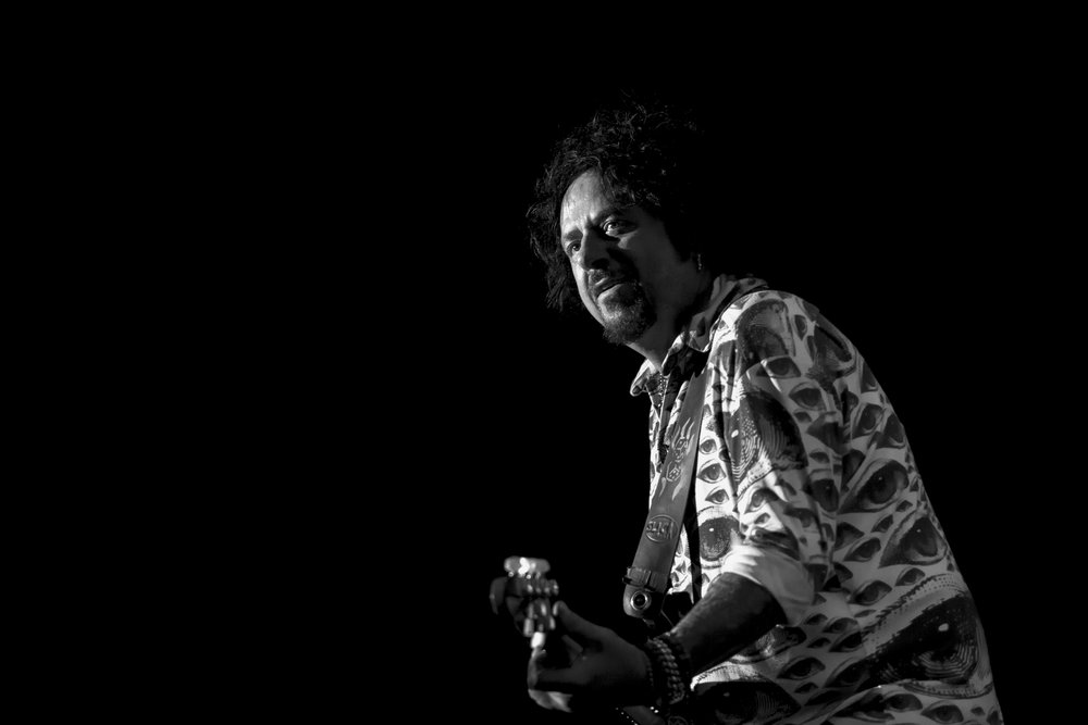 1_Toto_Festival Hall_LucasPackett-6G6A1214.jpg