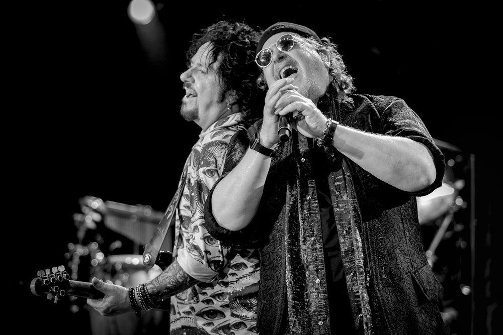 1_Toto_Festival Hall_LucasPackett-6G6A1810.jpg