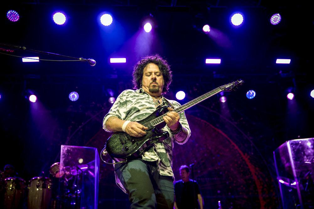 1_Toto_Festival Hall_LucasPackett-6G6A1559.jpg