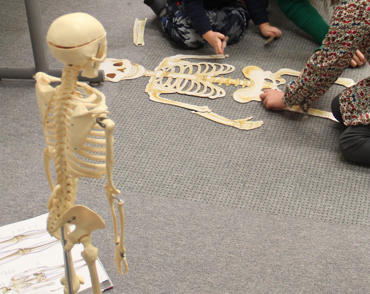 science+club+skeleton+and+puzzle.jpg