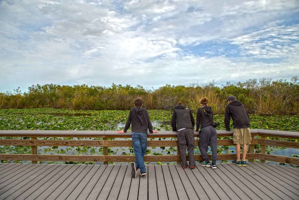 Hiking into the Everglades from the Ernest F. Coe Visitor Center.