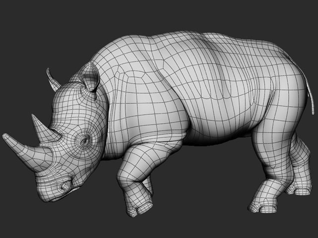 Rhino_Wire.jpg