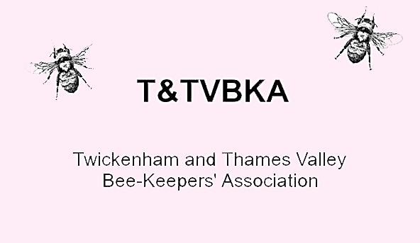 T&TVBKA.png