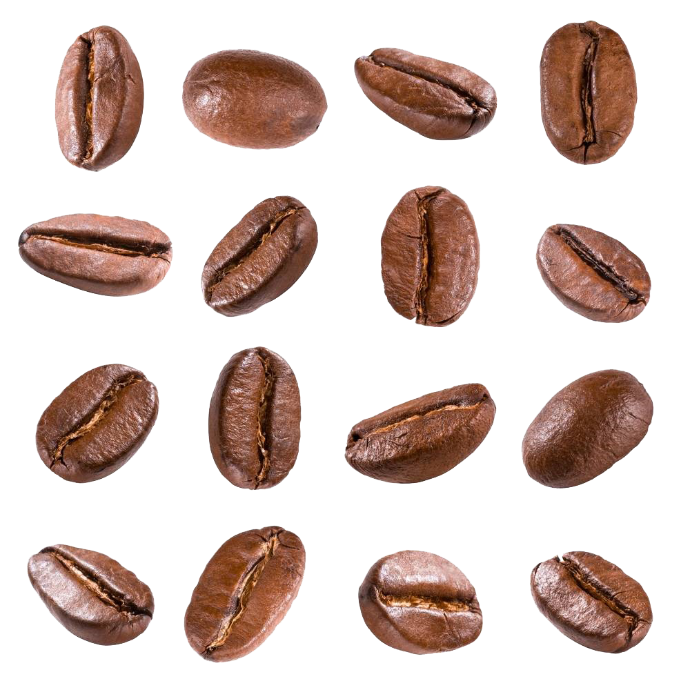Coffee Beans Types.png