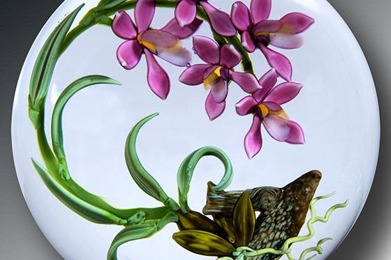 ID378435-Pink-Vanda-Orchids-Colin-P-Richardson.jpg