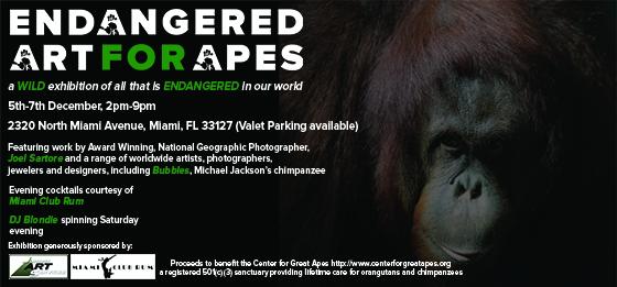 Endangered_Website-Nov-2013_JNv3.jpg
