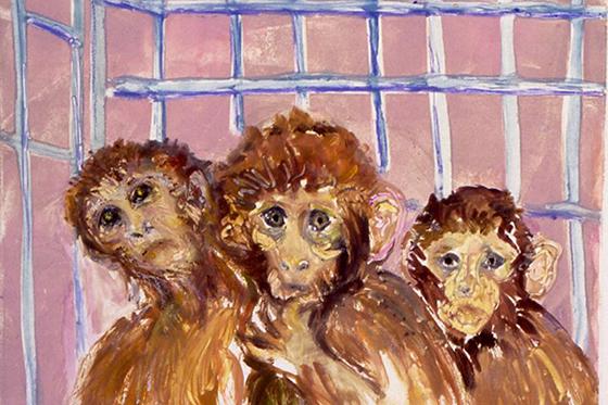 ID379007-Silver-Springs-Monkeys-2-Diana-Kurz.jpg