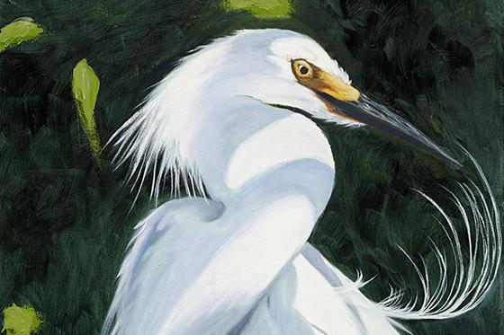ID379932-Ruffled-Feathers-Dorothea-E-Talik.jpg
