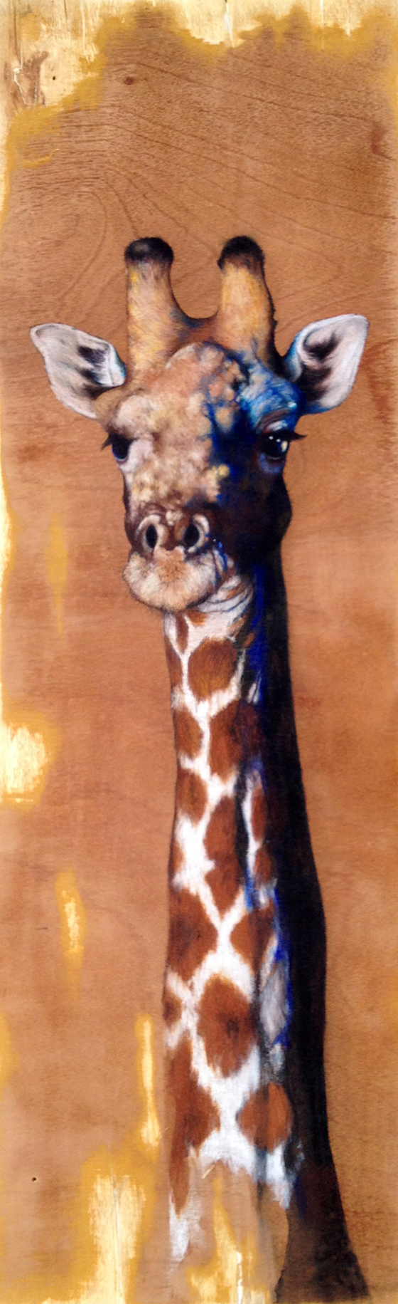 ID426442-Giraffe-Anthony-L-Burks.jpg