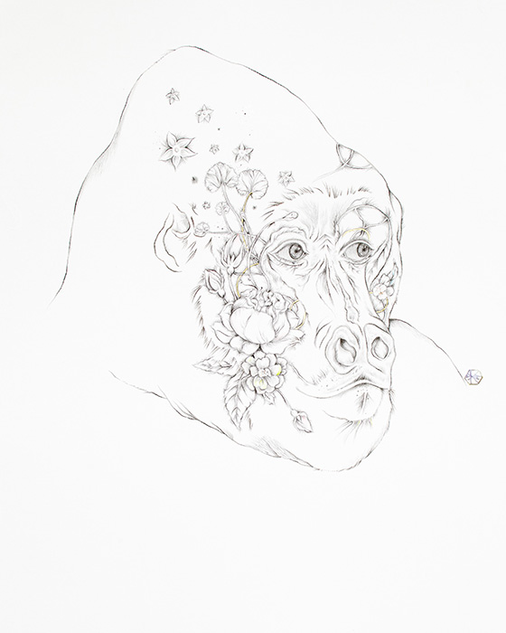 ID458608-Botanical-Silverback-Karen-D-Robey.jpg