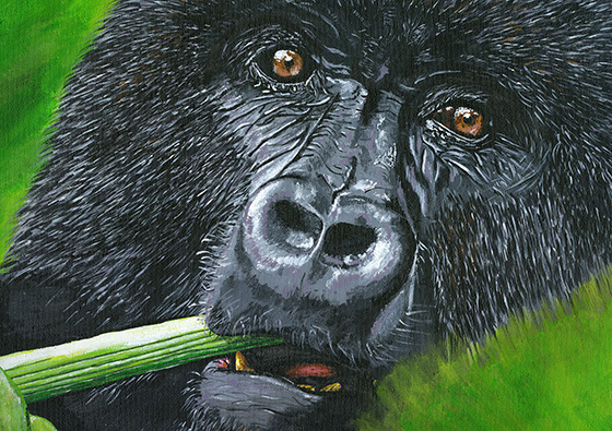 ID463418-Gorilla-Lovejoy-Creations.jpg