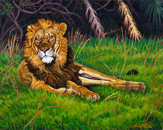 ID469176-Kwetsani-Lion-Prince-Andrew-Taylor.jpg