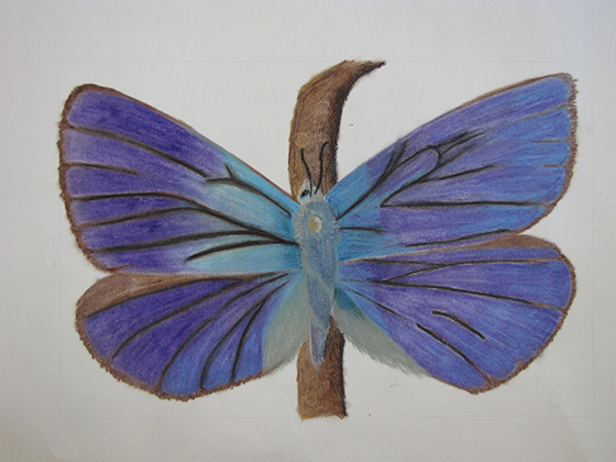 WEB_YA_ID475319-Flying-Flowers-Haley-Benard.jpg