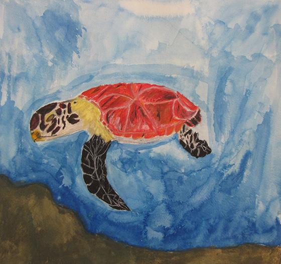 WEB_YA_ID475343-The-Majestic-Sea-Turtle-Mikaylah-Watts.jpg