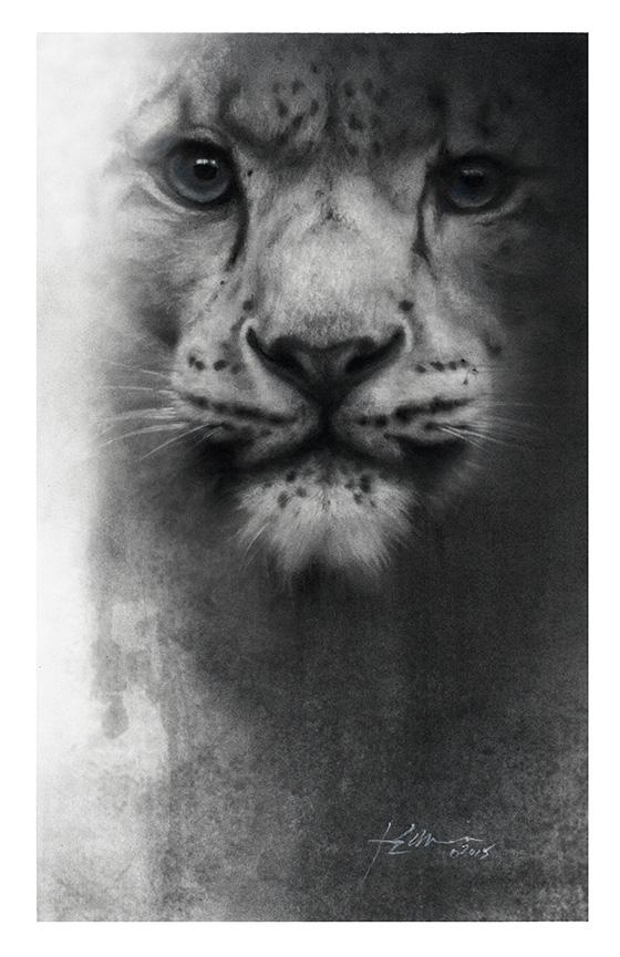 WEB_FA_ID475440-Snow-Leopard-Jeff-Echevarria.jpg