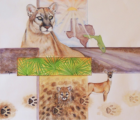 WEB_FA_ID496559-Endangered-Florida-Panther-Maria-Ryan.jpg