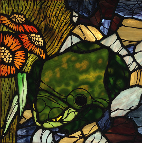 WEB_FA_ID505863-Hiding-Toad-Margot-Marquette.jpg