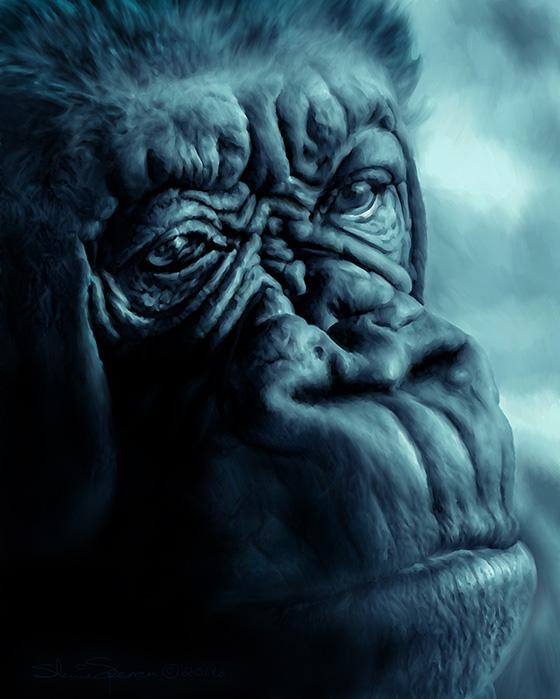 WEB_FA_ID509643-Blue-Gorilla-Sherrie-Spencer.jpg
