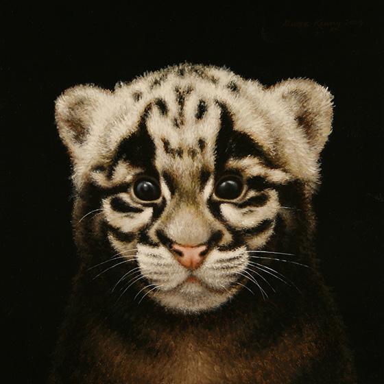 WEB_FA_ID509955-Clouded-Leopard-Steven-Kenny.jpg