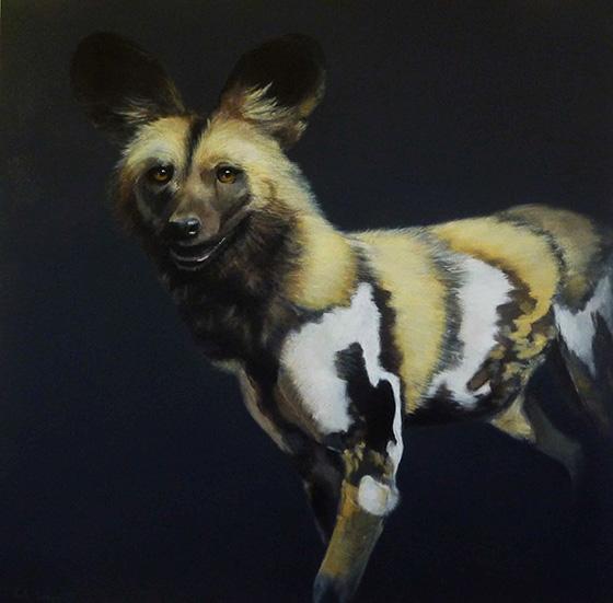 WEB_FA_ID510507-African-Wild-Dog-Paula-Wiegmink.jpg